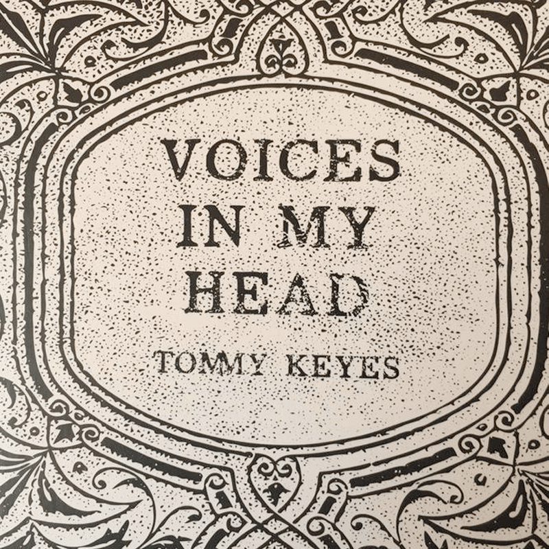 voices in my head.